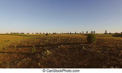 fields., 空中写真