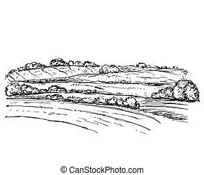 fields., 風景
