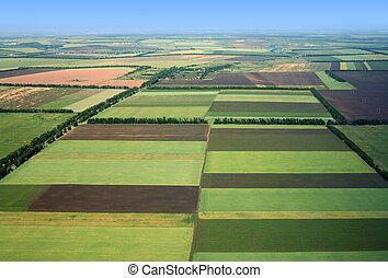 fields., aérien, vue.