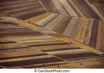 fields aerial landscape at summer