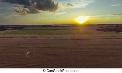 fields aerial view at sunset