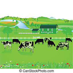 Fields and farming