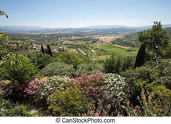 Fields and meadows in valley below Gordes, Provence France