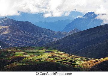 Fields in Bolivia - fields in Bolivia