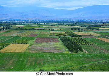 Fields in the mountain valley