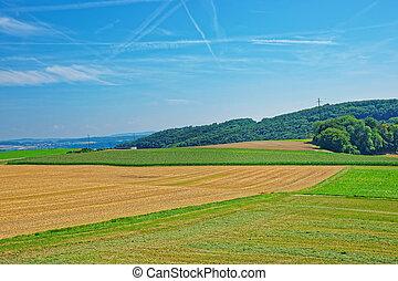 Fields in Yverdon in Jura Nord Vaudois Vaud Switzerland -...
