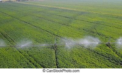fields., irrigation, aérien, système