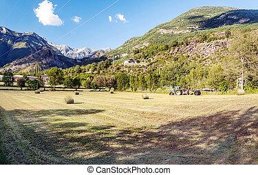 Fields of Castejon