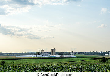 Fields of Lancaster County - The lush green fields and...