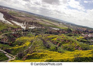 Fields of Toro