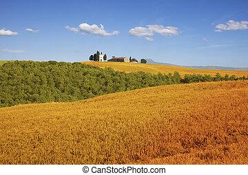 Fields of Tuscany, Italy