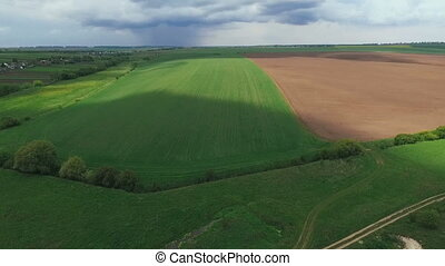 Fields under sky, plant, green wheat, soil. Aerial view