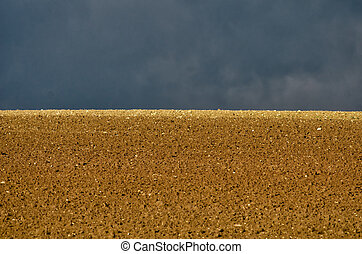 fields under the sun