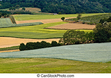 Fields, vineyaard, forest & meadow green layers