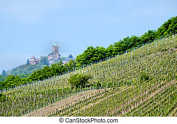 Fields with castle on hill in background