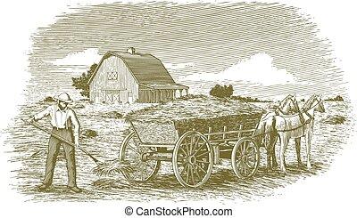 fieno, woodcut, contadino