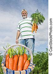 fier, carotte, paysan, cueillette, frais, c
