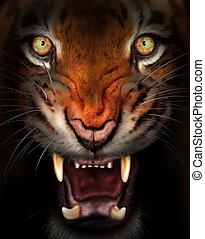 Fierce tiger - Wild tiger emerging from the dark shadows