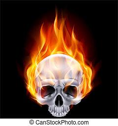 Illustration of chrome fiery skull on black background.