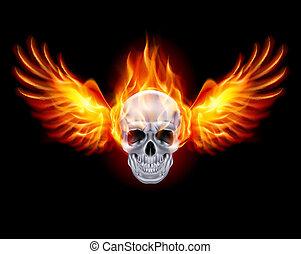 Fiery skull with fire wings on black background.