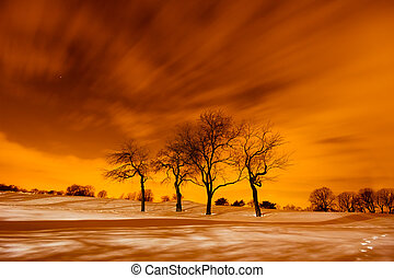 Fiery Winter Scene - Winter scene of snow and trees under a...