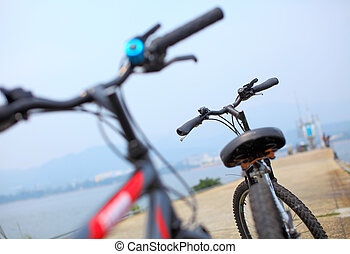 fiets, dichtbegroeid boven