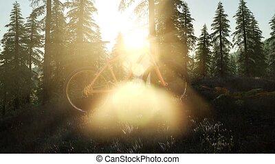fiets, in, berg, bos, op, ondergaande zon