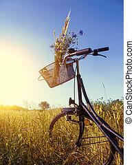 fiets, landscape
