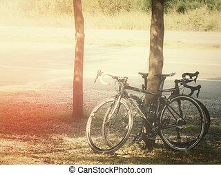 fietser, paardrijden