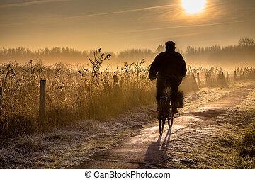 fietser, senior, silhouette, landscape