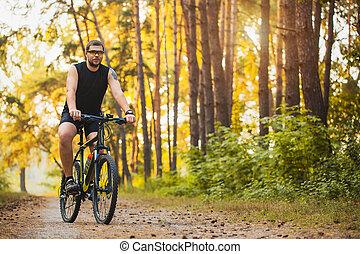 fietser, zomer, spoor, fiets, bos, paardrijden