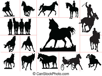 Fifteen horse silhouettes. Vector