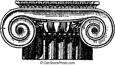 Fig. 1. Ionic Greek, Anterior and posterior views, vintage engraving.