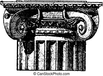 Fig. 3. Ionic (Pompeii) with angle volutes, vintage engraving.