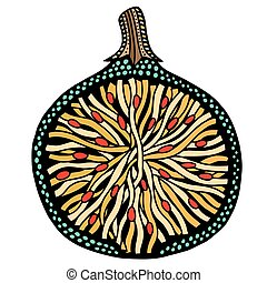 Fig fruit black and white. Hand-drawn, doodle, vector. Made...