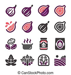 fig icon set, vector and illustration