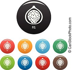 Fig icons set color vector