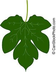 Fig leaf, illustration, vector on white background.