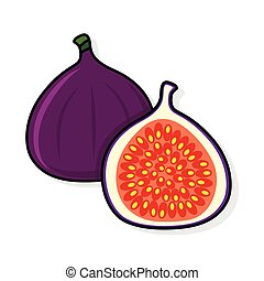 Fig on a white background. Fig sliced. fig illustration. fig...