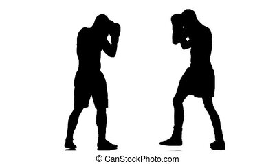 Fight two champions boxers. Silhouette of man on white background