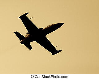 Fighter aircraft. Toned