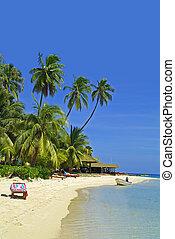 figi, isola