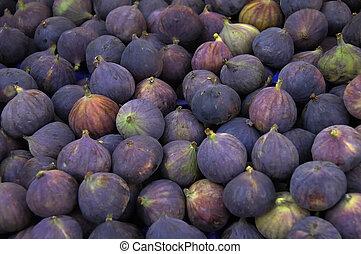 Figs - An array of fresh purple figs. Shallow depth of field
