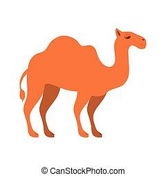 figura animal, de, camelo, caricatura