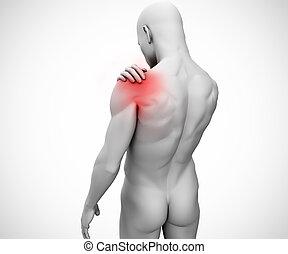 figura humana, conjunto, ombro, destacado