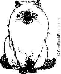 figura, plano de fondo, primer plano, negro, gato blanco