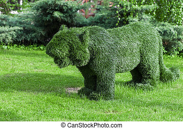 Figure pumas made of synthetic mimics trimmed bush