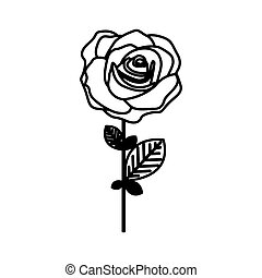 figure rose with petals and leaves icon