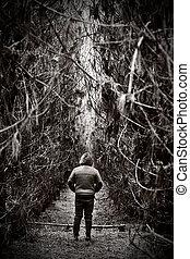 figuur, aandurven weg, in, dicht bos, steegjes