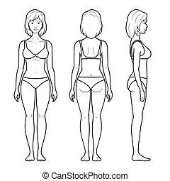 figuur, illustratie, vrouwlijk